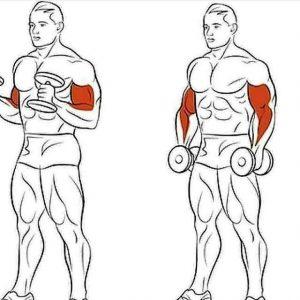 Aprende a hacer el rizo del cable de los bíceps