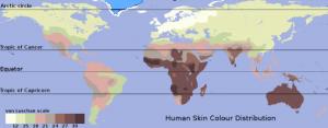 Las razas más grandes en el funcionamiento de la Historia