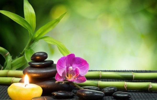 Photo of Terapias alternativas