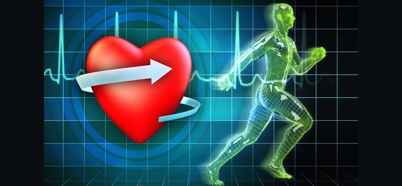 Photo of Cómo usar el ritmo cardíaco de recuperación para estar en forma