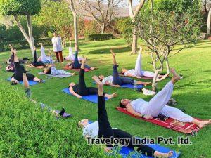 Explora la historia del yoga incluyendo sus principales tipos y estilos de posturas