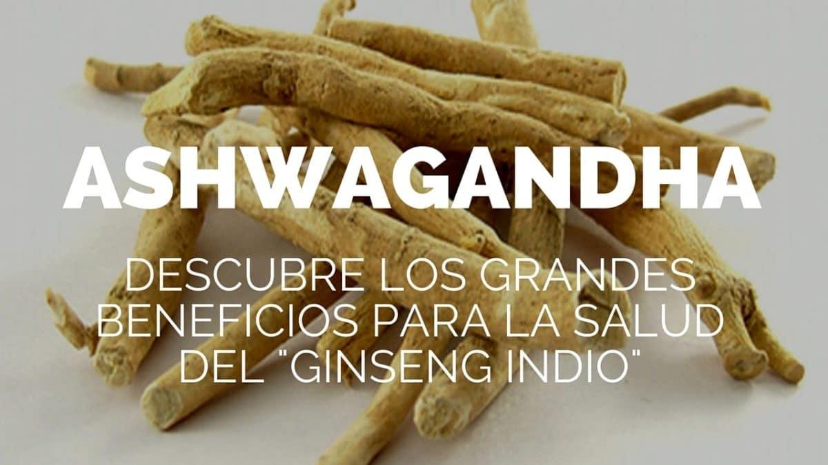 Photo of Los beneficios para la salud de Ashwagandha