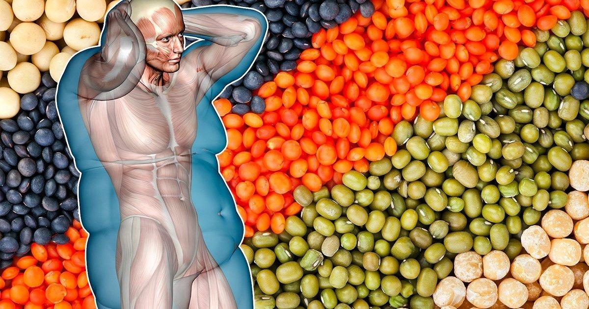 Photo of Los granos enteros podrían ayudar con la pérdida de peso si son altos en fibra
