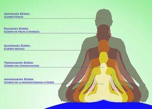 Los Koshas del cuerpo deben ser integrados para una salud óptima