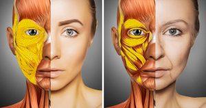Por qué envejecer hace que la forma de tu cuerpo cambie