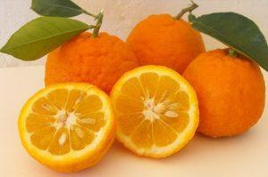 Riesgos para la salud de los suplementos dietéticos con naranja amarga