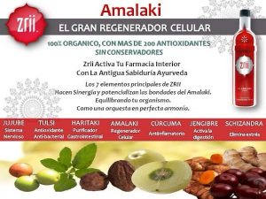 Se dice que Amalaki es una hierba que promueve la longevidad