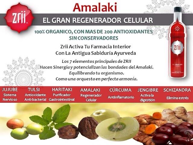 Photo of Se dice que Amalaki es una hierba que promueve la longevidad